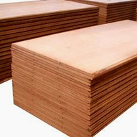 Rus Birch  WBP 6 mm plywood